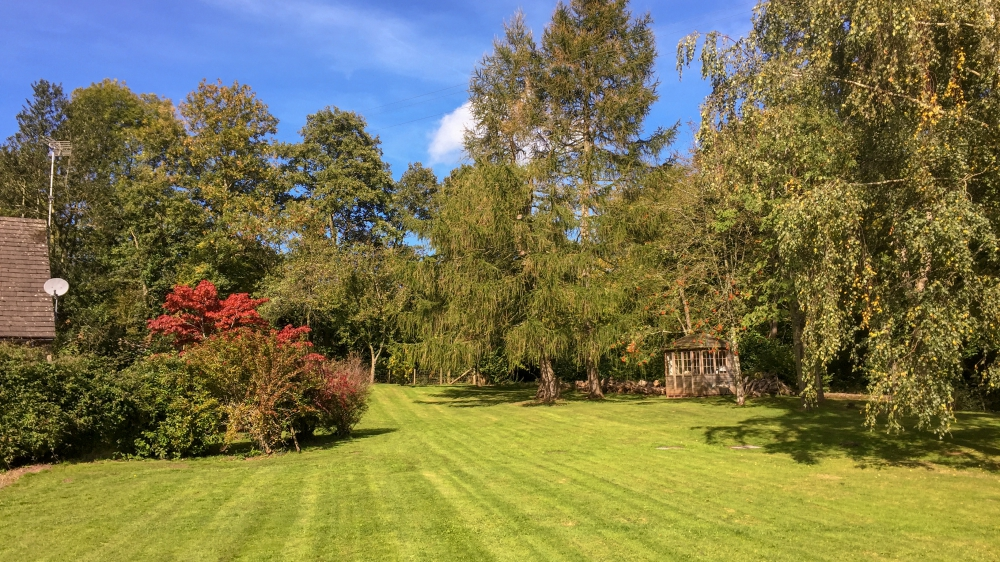 Riverside garden at Forest Mill Cottage